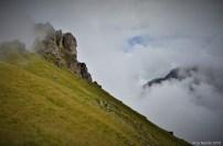 halfandhalf-mountain (4)