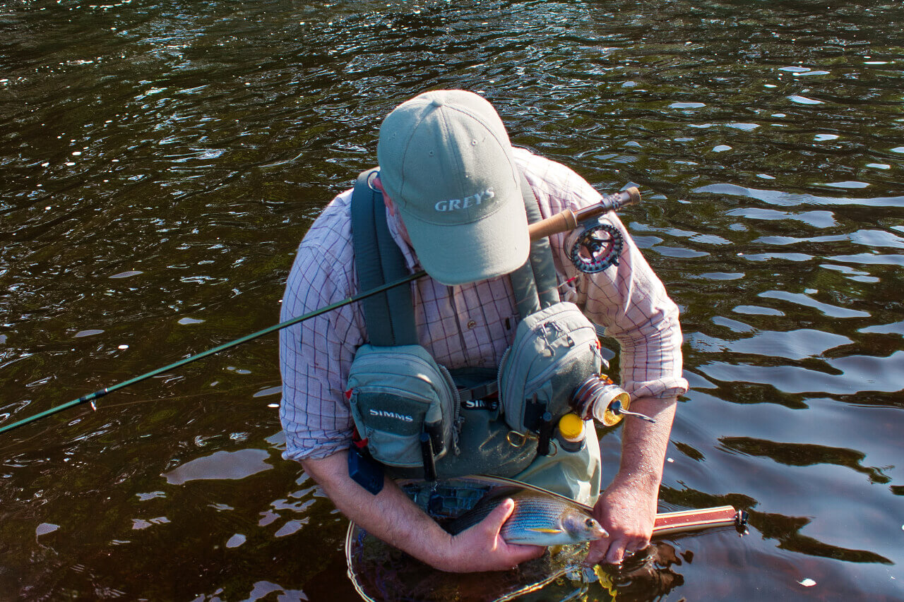 guided fly fishing for grayling on scottish river