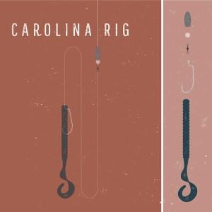 carolina rig for bass