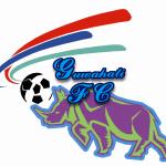 logo_GFC_BIG