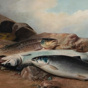 John Russell: Still Life study of a Salmon, Sea-Trout and Brown Trout