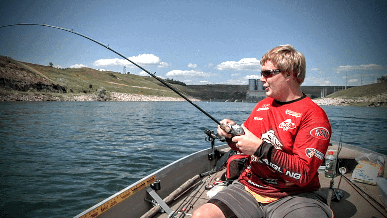 Missouri River Catfish Report
