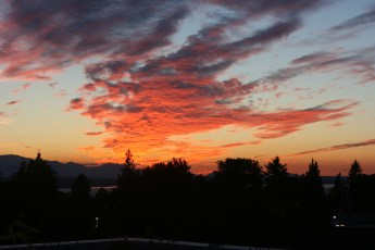 The view from my roof