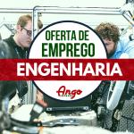 Profis Angola