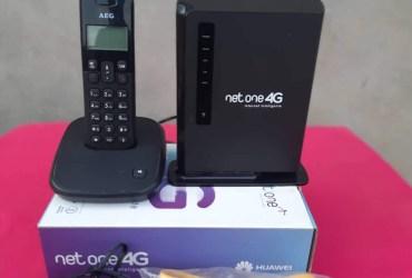 Net One 4G ( Novo com telefone Fixo)