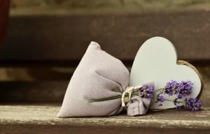 lavender-823600_960_720