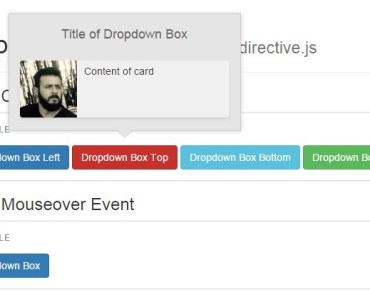 Angular Directive For Dropdown Components