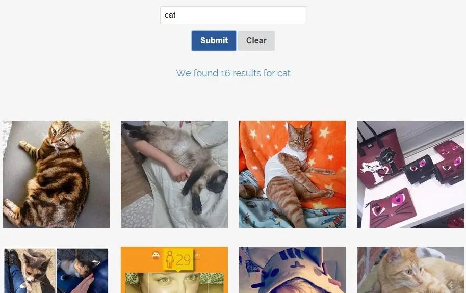 Instagram Searcher