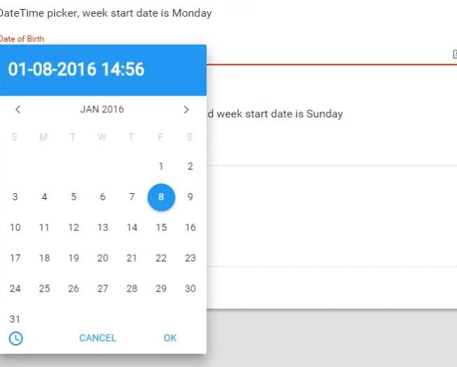 Mat Datepicker Example