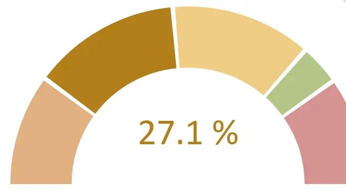 Lightweight Gauge / Doughnut Chart For AngularJS   Angular Script