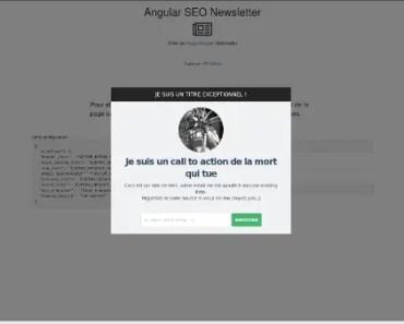 angular-seo-newsletter