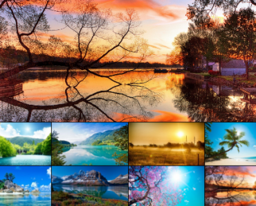 Angular Super Image Gallery
