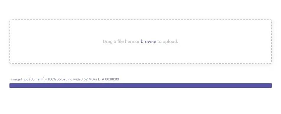 ngx-uploader