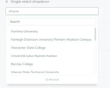 Dropdown Selectbox For Angular 4+
