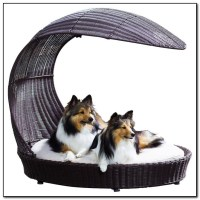 Outdoor Dog Beds With Canopy - Beds : Home Design Ideas # ...