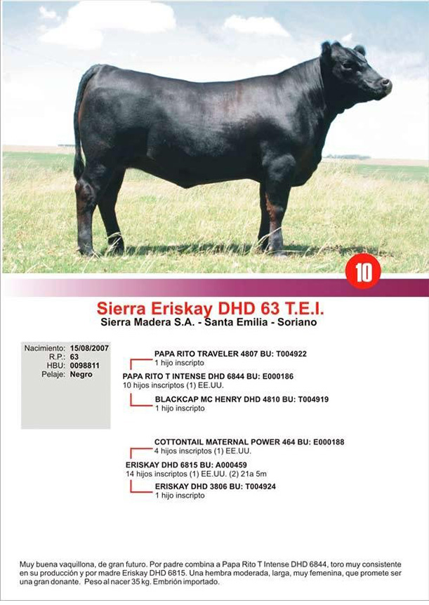 lote10_1