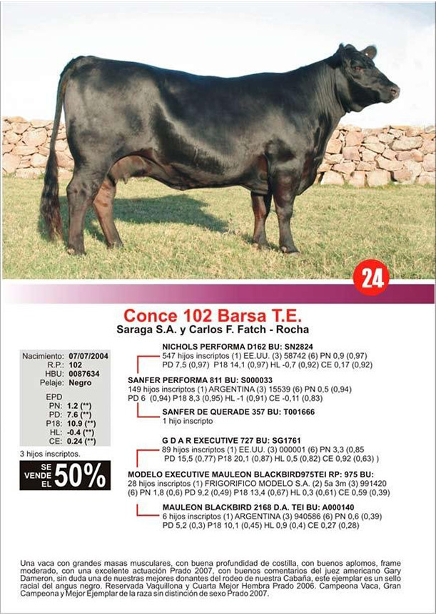 lote24_1