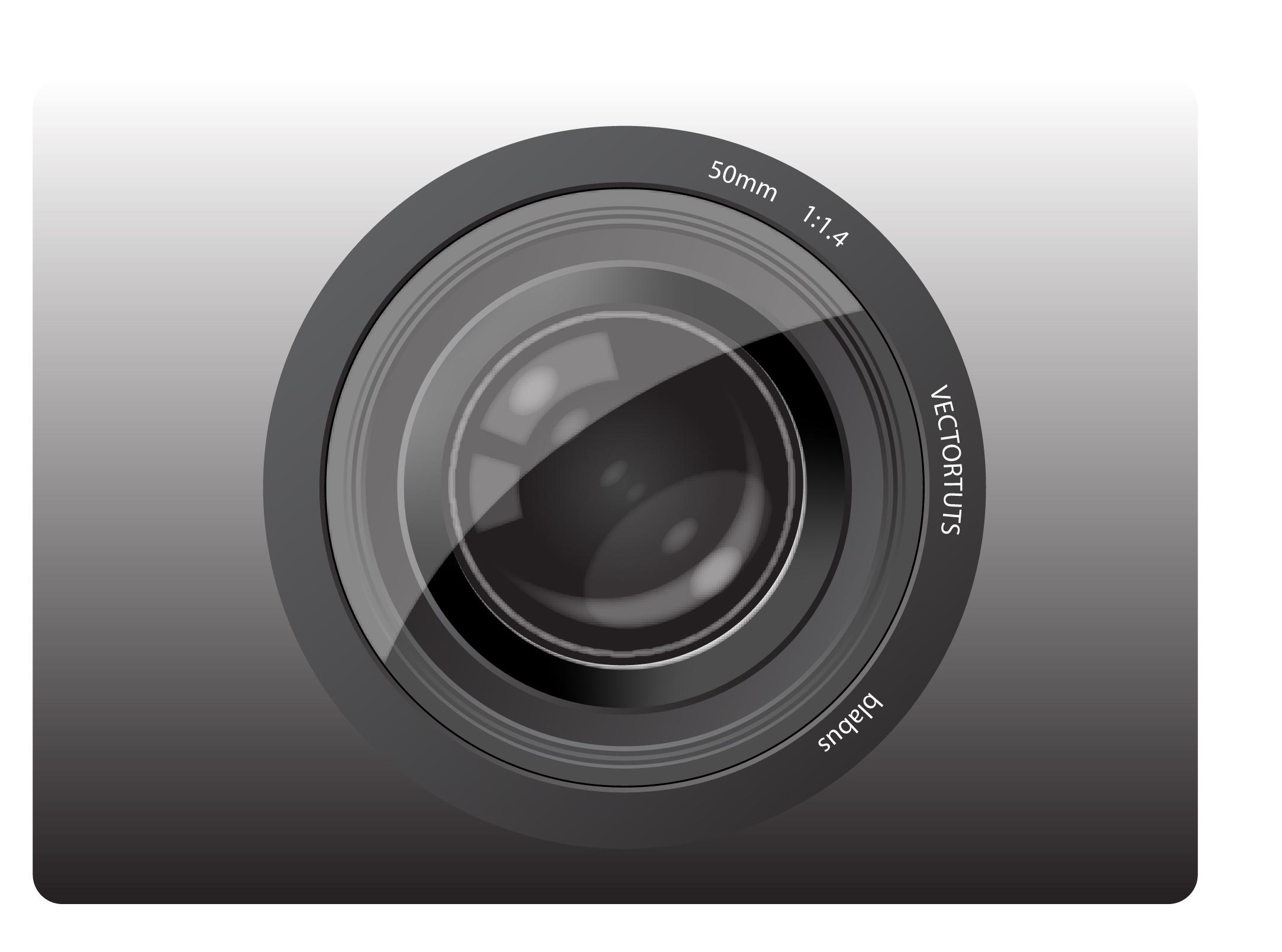 Camera Lens Diagram Related Keywords Suggestions Camera Lens