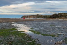 flat-rock-mollymook-beach