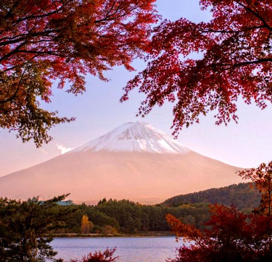 monte-fuji-otoño