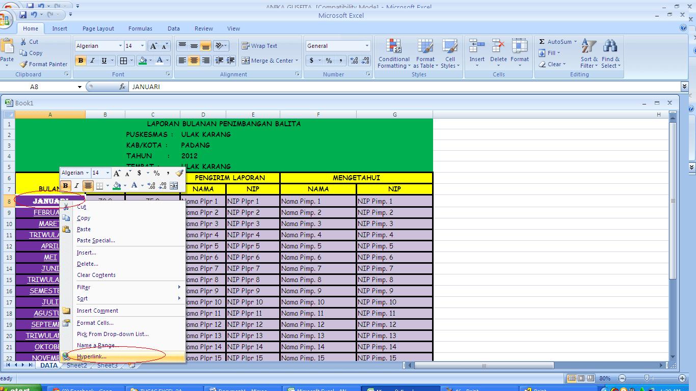 Laporan Tahunan Excel