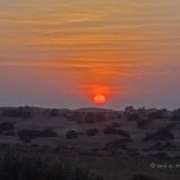 Sunset at Sam Desert