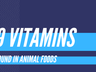 vitamins found in animal foods