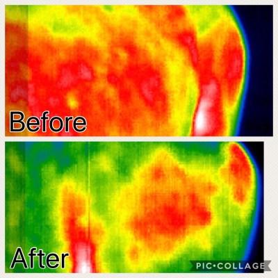 Thermal Imaging Equine Massage