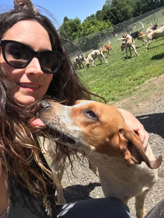 Canine Sports Massage New Jersey