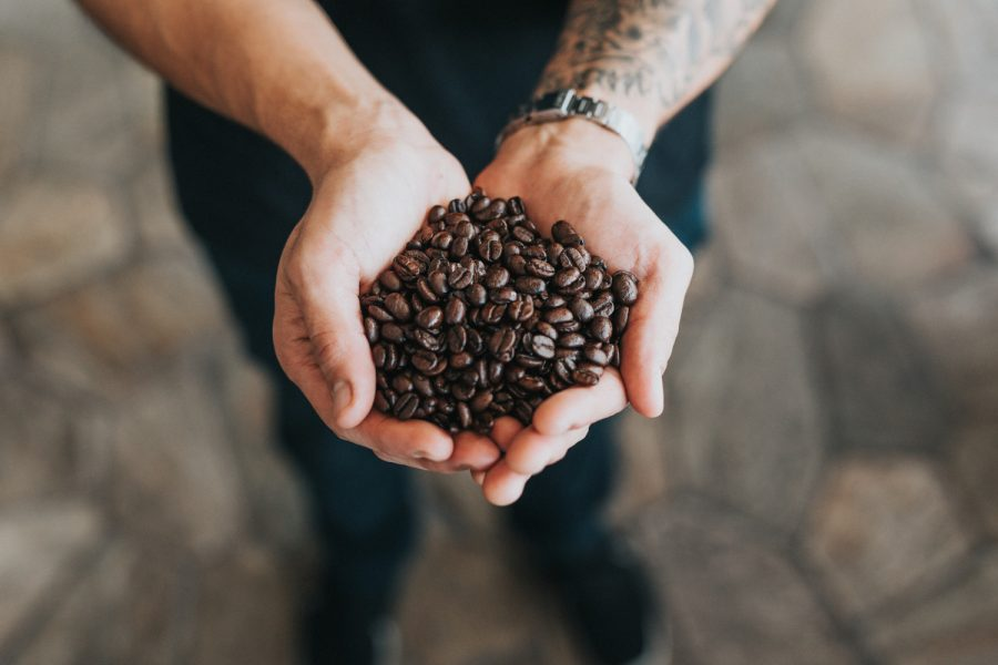 Cafe de especialidad Animal Coffee Granos de café