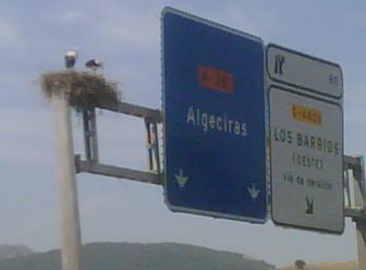 A fine view of autopista