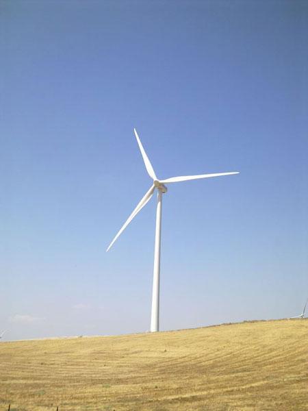 A stately wind turbine