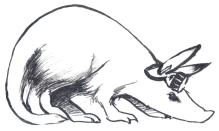 Quaardvark: Home