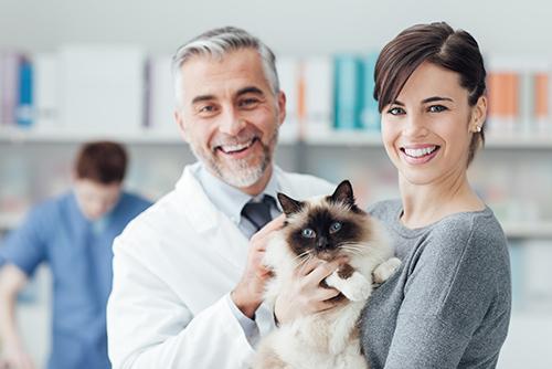 Gastroenterologia-veterinaria-milano