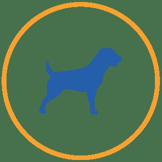 piani salute cane adulto