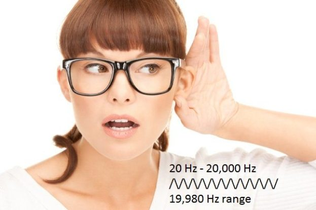 human-hearing-range
