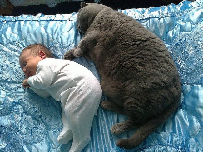 2-photos-of-kids-and-pets-that-melt-your-heart