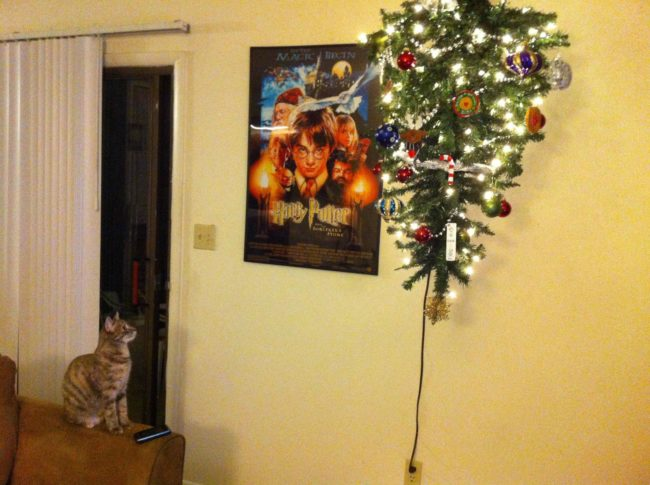 8-how-these-people-saved-christmas-trees-is-brilliant