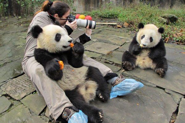 photographer-wildlife-6