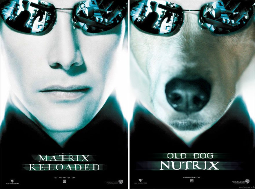 Dog-Movie-Posters-7