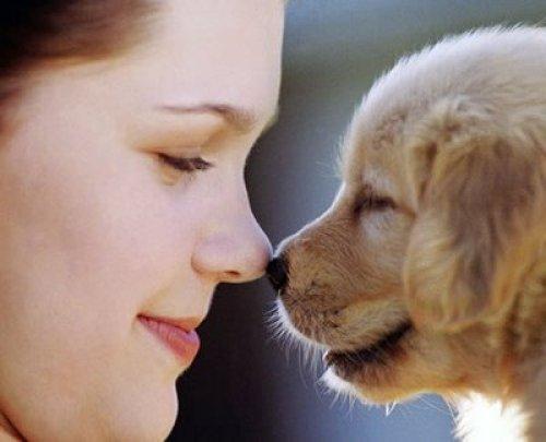 mascotas-y-su-beneficio-para-la-conciencia-humana_ojykl