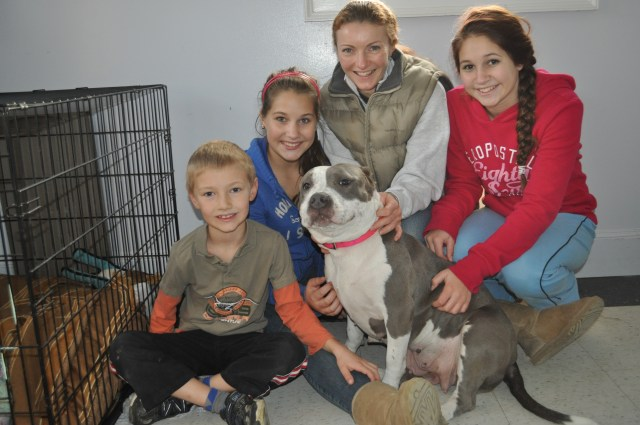 pit bull and family