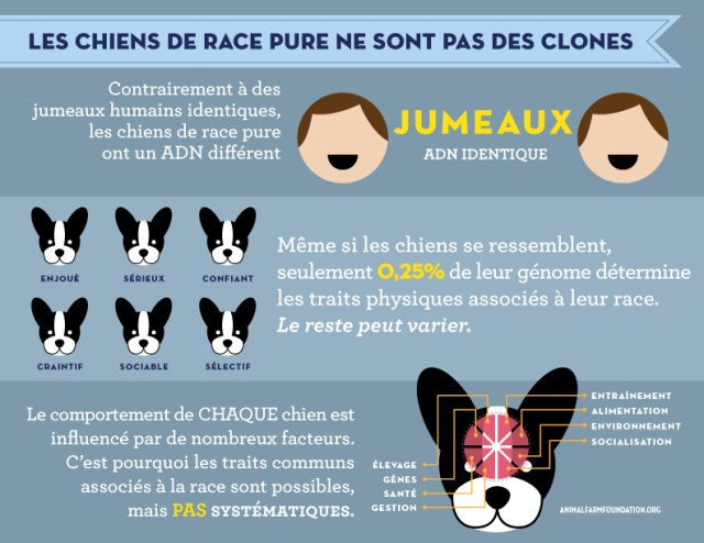 AFF_infographic_FRENCH_6