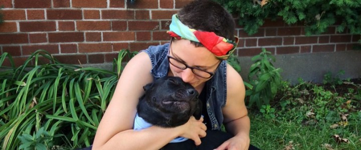 Montreal SPCA Discusses the City's New BSL and What It Means For Hundreds of Families