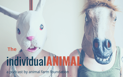 Introducing the Individual Animal