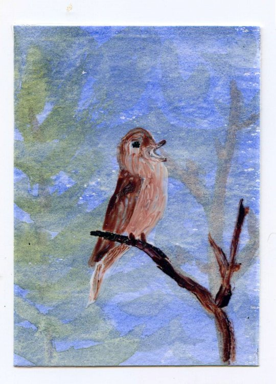 A nightingale miniature painting in acrylic and glass paint
