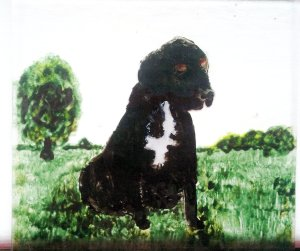 Pet portrait glass painting of a black labrador on a glass coaster