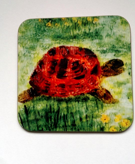 Tortoise coaster with a wood back