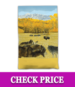 Taste of The Wild Grain - Free Premium High Protein Dry Dog Food High Prairie Adult