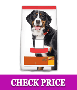 Hill's Science Diet Dry Dog Food For Adult - Cheap Affordable